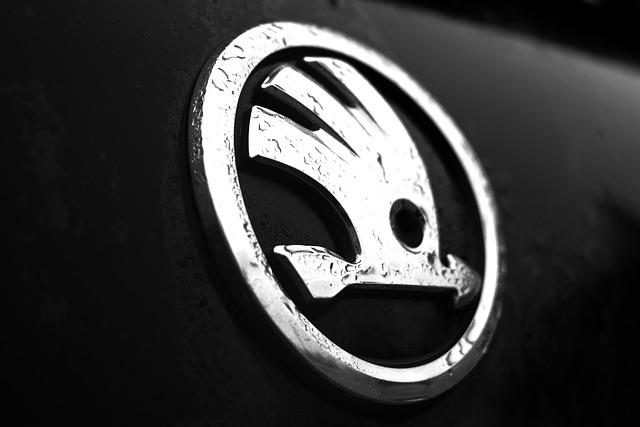 skup aut Skoda Kwidzyn